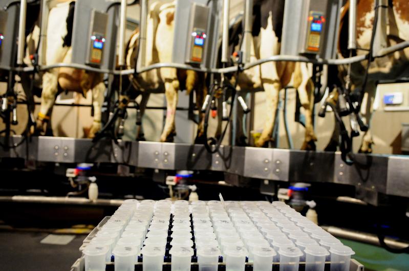 melkproductiekenmerken mpr